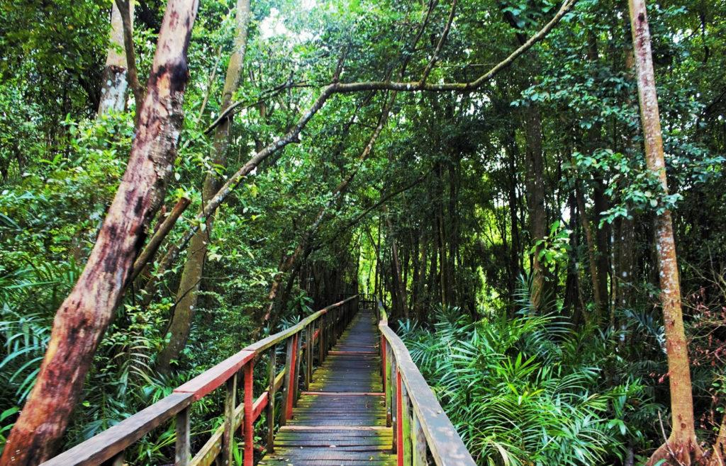Lekki Conservation Center